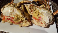 Krabborna är här - bästa skaldjuret? Ät naturell eller i förförisk stuvning...