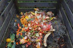 Så komposterar du för att lyckas