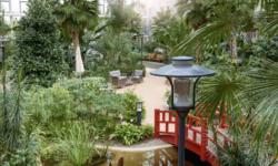 Vad kan du om trädgården?