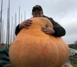 Enorm pumpa sådde frö – Trädgårds-Tony älskar att odla i tunnelväxthus!
