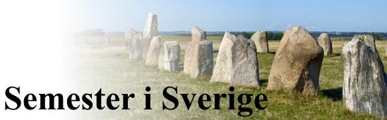 News55 - Här kan du semestra i Sverige i sommar – så påverkas campingträffar av Covid-19