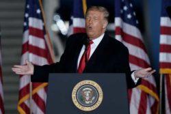 Vad vet du om Donald Trump?